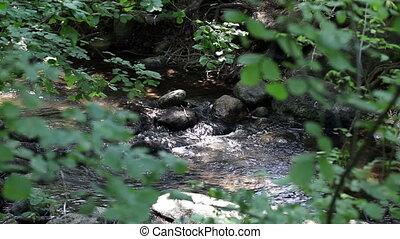 Small Creek Running