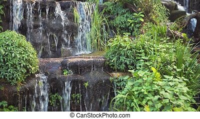Small creek with waterfalls in the tropical nature - A small...