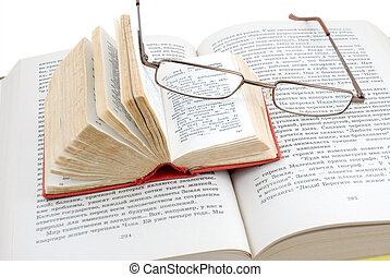 The small red dictionary lays on the opened book