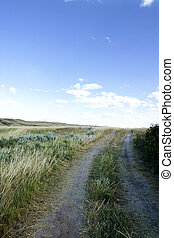 Small Dirt Road - A small dirt road on the prairies.