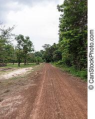 Small dirt road.