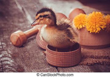 small duckling with egg on the wooden table