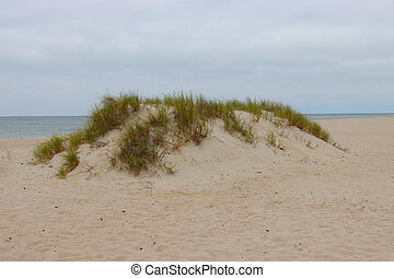 Small dune on the shores of the Baltic Sea.