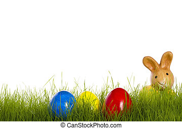 small easter bunny with easter eggs in grass with white background