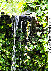 Small falls in tropics