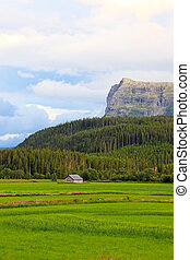 Small farm houses in valley. Landscapes of Norway.