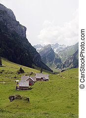 Small farm in Swiss alps (Appenzell, Switzerland)
