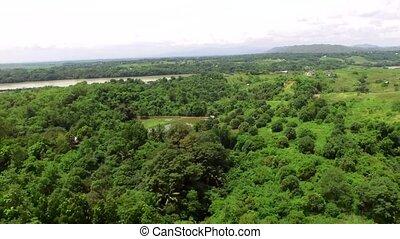 Small farming community village abundant trees that grow...