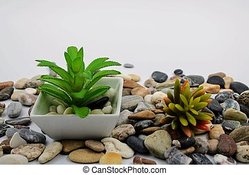 Small flowerpot with plant