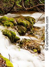 Small forest cascade vertical shot, Krka national park, Croatia