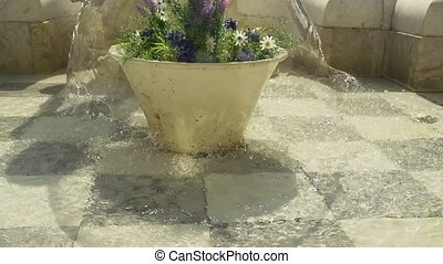 Small Fountain with flowers inside