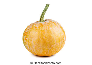 Small fresh pumpkin isolated on white background