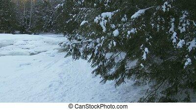 Small frozen pond in winter in Algonquin Provincial Park, Ontario, Canada