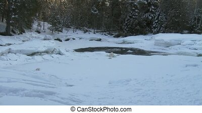 Small frozen pond in Algonquin
