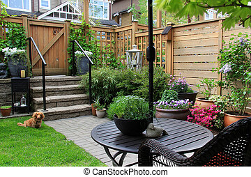 Small garden in springtime with dachshund dog sitting on the...