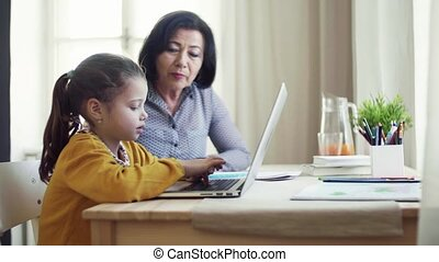 Small girl with grandmother sitting at table at home, using...