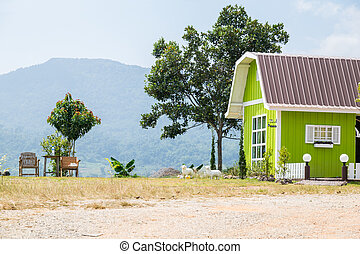 Small green cottage on the hill