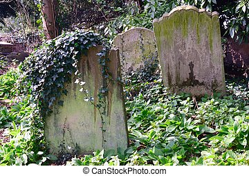 Small group of gravestones in Graveyard
