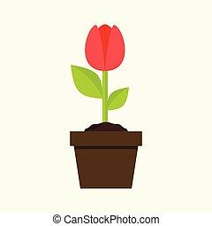 Small Grow Tulip Flower Plant Illustration Graphic