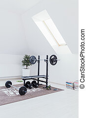 Small home gym with bench with dumbbells