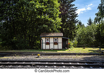 Small house close to a railroad with red flowers