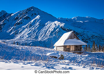Small house covered with snow in the mountains