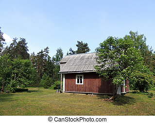 Small house in the forest, sunny day
