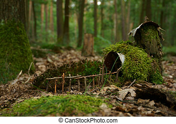 small house in the moss