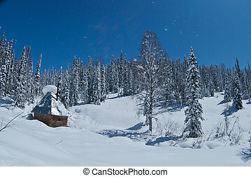 Small house in winter forest