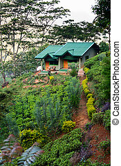 Small house on a green hill at mountains