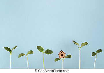 small house stand on sprout with growing young plants on blue background