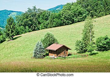 Small hut the austrian alps