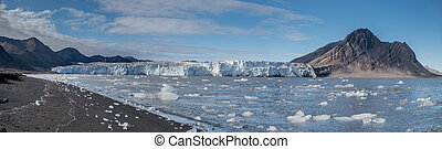 Small icebergs in front of a glacier