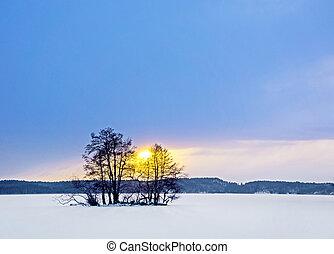 Small island in winter