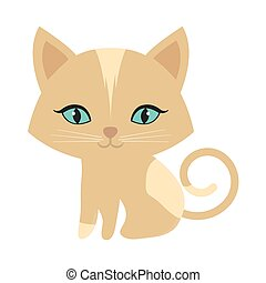 small kitten sitting blue eyes