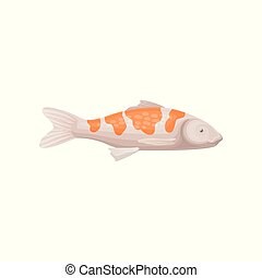 Small koi fish with bright orange spots. Sea creature. Marine animal. Flat vector for advertising poster or banner