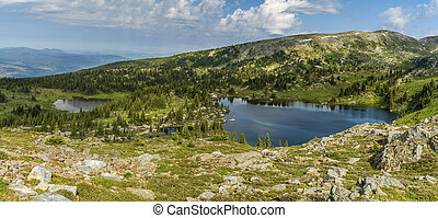 Small lake in the green alpine meadows