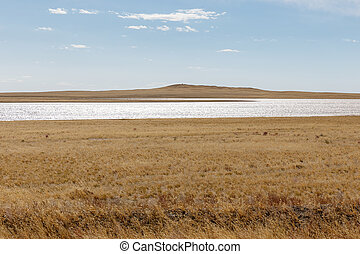 small lake in the mongolian steppe