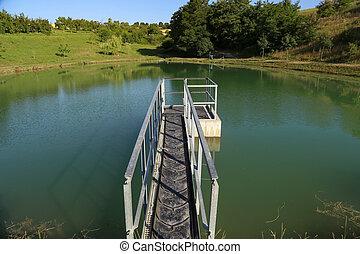 The bridge on the lake