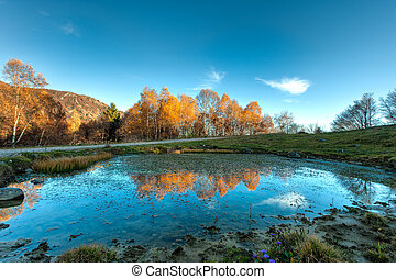 Small lake with reflections of autumn