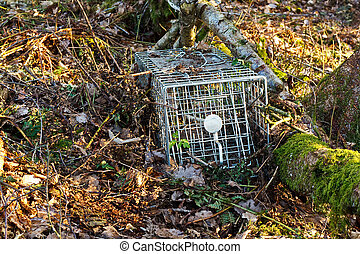 Small mammal trap - non lethal or humane steel animal trap...