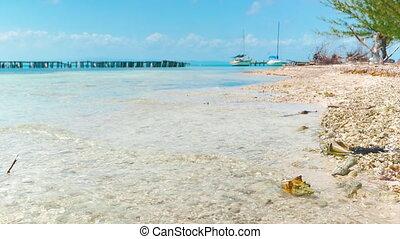 Small Marina at Coral Island - Waves hitting the coral beach...