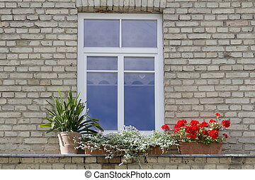 Small modern plastic window with flowers on vintage old brick wall background.