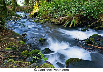 Small Mossy Creek