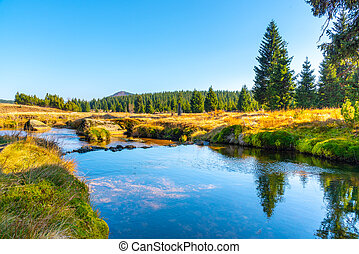 Small mountain creek meandering in the middle of meadows and forest. Sunny day with blue sky and white clouds in Jizera Mountains, Northern Bohemia, Czech Republic.