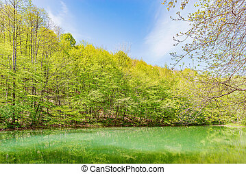 Small mountain lake in the forest at springtime.