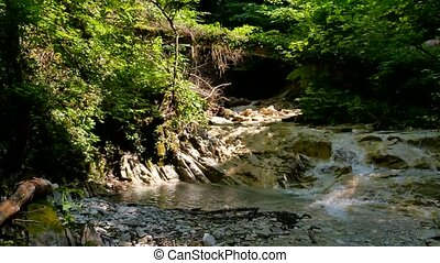 small mountain river nature with rocks. River in the mountains wildlife beautiful landscape