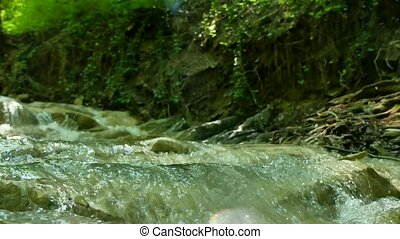 small mountain river with rocks. River in the mountains wildlife beautiful landscape nature