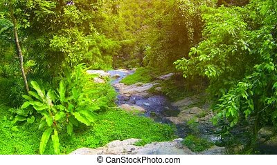 Small Mountain Stream and Waterfall in Thai Jungle