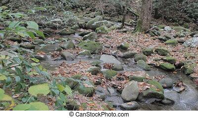 Small mountain stream - tracking along a small mountain...